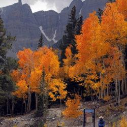 Wheeler Peak Trailhead - Image 50 of 50