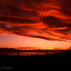 Red Sunset - Image 11 of 28